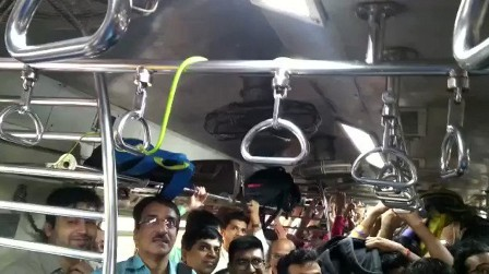 Snake in train, commuters panic