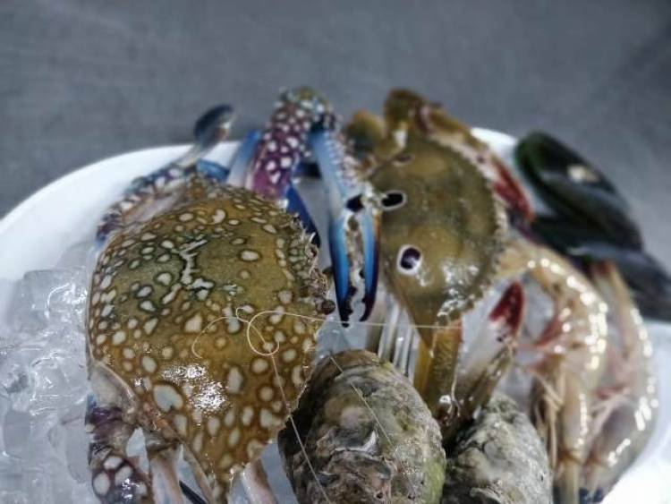 Kommune presents 'Fresh Catch', A Sea Food Festival from 1st November to 30th November 2019