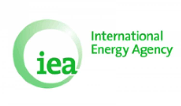 IEA launches India's Energy Policy Report
