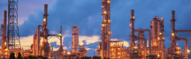 Tamilnadu Petroproducts Ltd. announcesQ3FY20 results