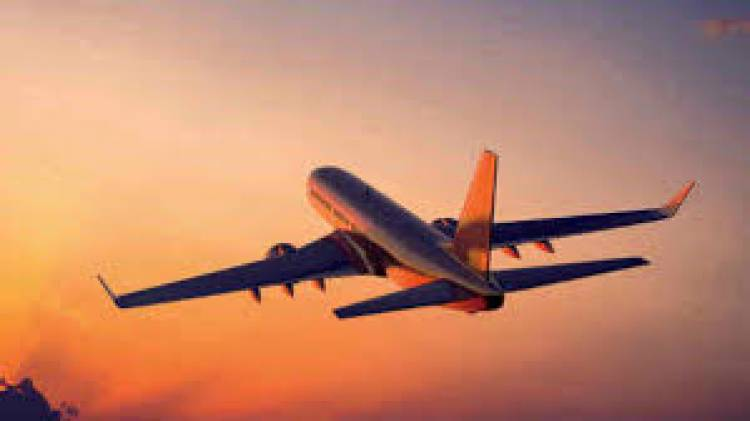 COVID-19 lockdown: Domestic flights resume after two months