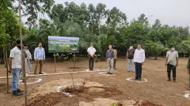 Gangavaram Port celebrates World Environment Day 2020