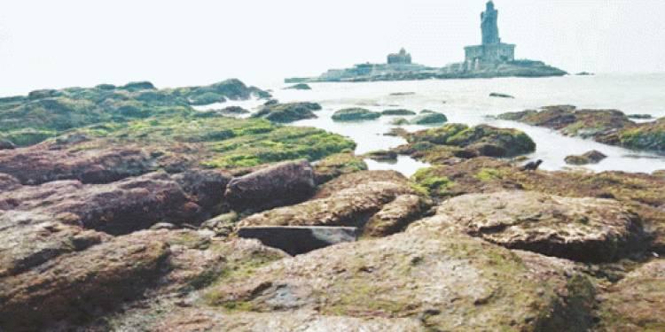 கன்னியாகுமரி  மீனவர்கள் பீதி கடல் திடீரென உள்வாங்கியதால் பரபரப்பு